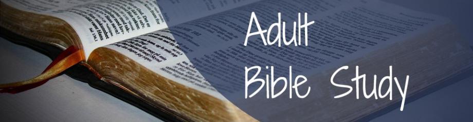 studies Adult bible