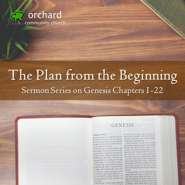 The Plan from the Beginning Series Logo