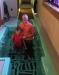 baptism_marshall.jpg