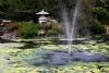 Friendship Fountain, Carrie Blake Park