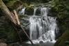 Sol Duc Area Falls